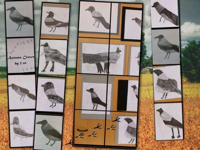 2en_crows