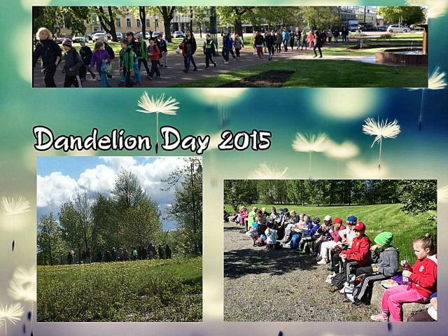 dandelion day7